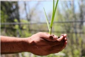 Document Unique pour Coop Agricole