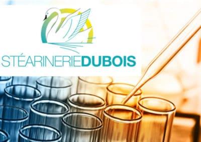 Stéarinerie Dubois : lier risque professionnel et risque chimique